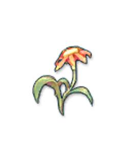 Roexplorer com - Abyss Flower